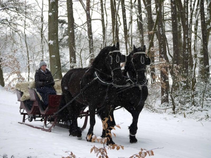 Romantische Kutschtour im Schlitten im Winter mit Kutschen Meyer